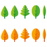 Leaf set. Different types of leaves in summer and autumn colors Stock Photography