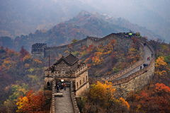 Great wall  autumn view. China great wall twists up on the mountain ridge,like a very long dragon,there are trees with brilliant yellow leaves both the great Royalty Free Stock Photography