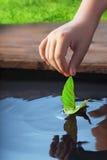 Leaf-ship Stock Images