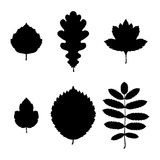 Leaf silhouettes Royalty Free Stock Images