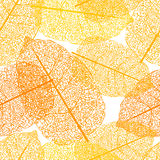 Leaf skeletons orange seamless vector background Royalty Free Stock Images