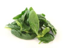 Leaf spinach Royalty Free Stock Images