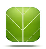 Leaf Square Icon Vector Stock Photography