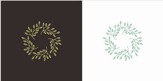 Leaf Star with Luxury style royalty free illustration