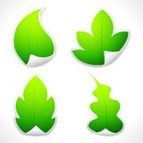 Leaf Sticker. Illustration of set of sticker in different leaf shape Royalty Free Stock Image