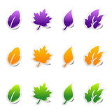 Leaf sticker icons with peeled edge Stock Photography