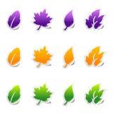Leaf sticker icons with peeled edge. Set of leaf sticker icons with peeled edge Stock Photography