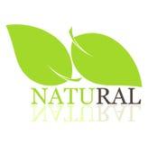 Leaf symbol Stock Photo