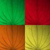 Leaf texture four color set. Leaf texture set in four colors Stock Photography
