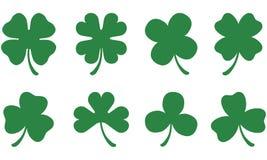 leaf tre för växter av släkten Trifolium fyra Royaltyfri Illustrationer