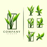 Leaf tree logo vector design royalty free illustration