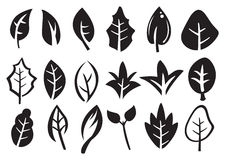 Leaf Vector Icon Set. Vector icons of leaves in variety of shape designs isolated on white Stock Image