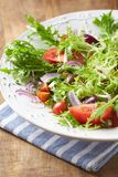 Leaf Vegetable Salad with Olives and Feta. Close up Stock Images
