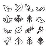 Leaf , vegetarian, Herb icon set in thin line style Royalty Free Stock Photo