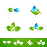 Leaf and Water Drop Logo Set Stock Photos