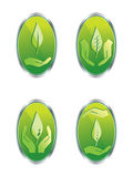 Leaf web buttons set Stock Image