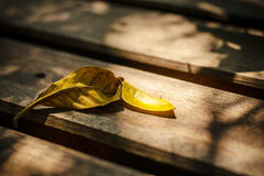 Leaf on wood and shadow Royalty Free Stock Photos