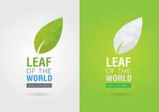 Leaf of the world. Eco volunteer icon. For green business soluti Royalty Free Stock Photography
