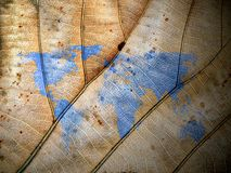 Leaf world map. Close up Royalty Free Stock Photos