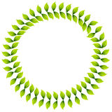 Leaf Wreath Stock Image