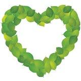 leafarrende Royaltyfri Fotografi
