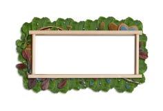Leafbaner Royaltyfria Bilder