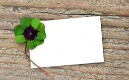 Leafed clover. And card on wooden board royalty free stock image