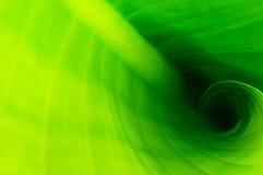 Leafen texturerar Royaltyfria Bilder