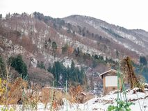 Leafless bergen dichtbij Shirakawa-dorp, Japan Royalty-vrije Stock Foto's