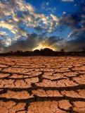 Leafless land Stock Images