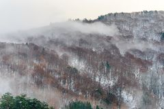 Leafless mountain in winter season. Leafless tree mountains with nearby forest near Shirakawa village, the UNESCO World Heritage place, in early winter season royalty free stock photography
