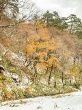 Leafless mountains near Shirakawa village, Japan Royalty Free Stock Images