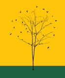 Leafless tree with birds silhouettes Royalty Free Stock Photos