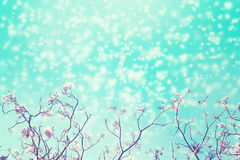 Leafless tree branch with pink flowers against blue sky and snow falling. Stock Photos