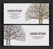 Leafless tree. ecology, nature banner. hand-drawn vector old oak. Royalty Free Stock Photo