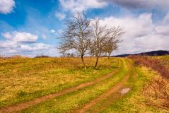 Leafless trees along the dirt road up the hill. Beautiful countryside springtime scenery in mountains on a sunny day with some clouds on a blue sky Stock Image