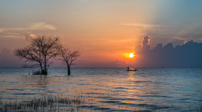 Leafless trees in the lake. And morning sun at Pakpra, Phatthalung stock photography