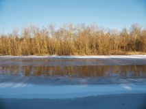 Leafless trees on other side of frozen river Stock Photo