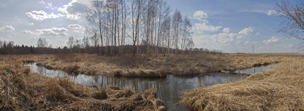 Pond in dry field. Leafless trees reflecting in a pond in a dry field Royalty Free Stock Photos