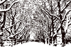 Leafless trees with snow on the branches, park Vector Stock Photo