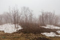 Leafless trees and snow on the ground with fog at Mount Usu in winter in Hokkaido, Japan.  stock image