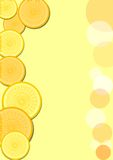 Leaflet background with slices of lemon and orange Royalty Free Stock Photography