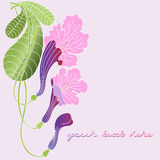 Leaflet with exotic flowers Royalty Free Stock Photos