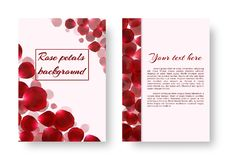 Leaflet with rose petals. A greeting card with rose petals flying against a light background. Vector illustration with a floral border Stock Image