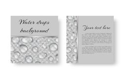 Banner with droplets. Leaflet template with translucent sparkling drops of dew Stock Photo