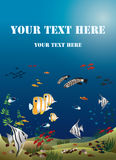 Leaflet width tropical fishes bottom of the ocean Royalty Free Stock Photography