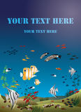Leaflet width tropical fishes bottom of the ocean Stock Image