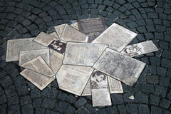 Leaflets of the white rose Stock Image