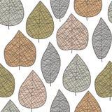 leafmodell Royaltyfria Bilder