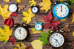 Leafs and alarm clock Stock Photos